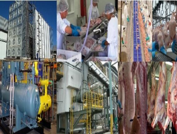 FAMEM, AGED e SAGRIMA  elaboram questionário sobre a situação do abate no Maranhão.